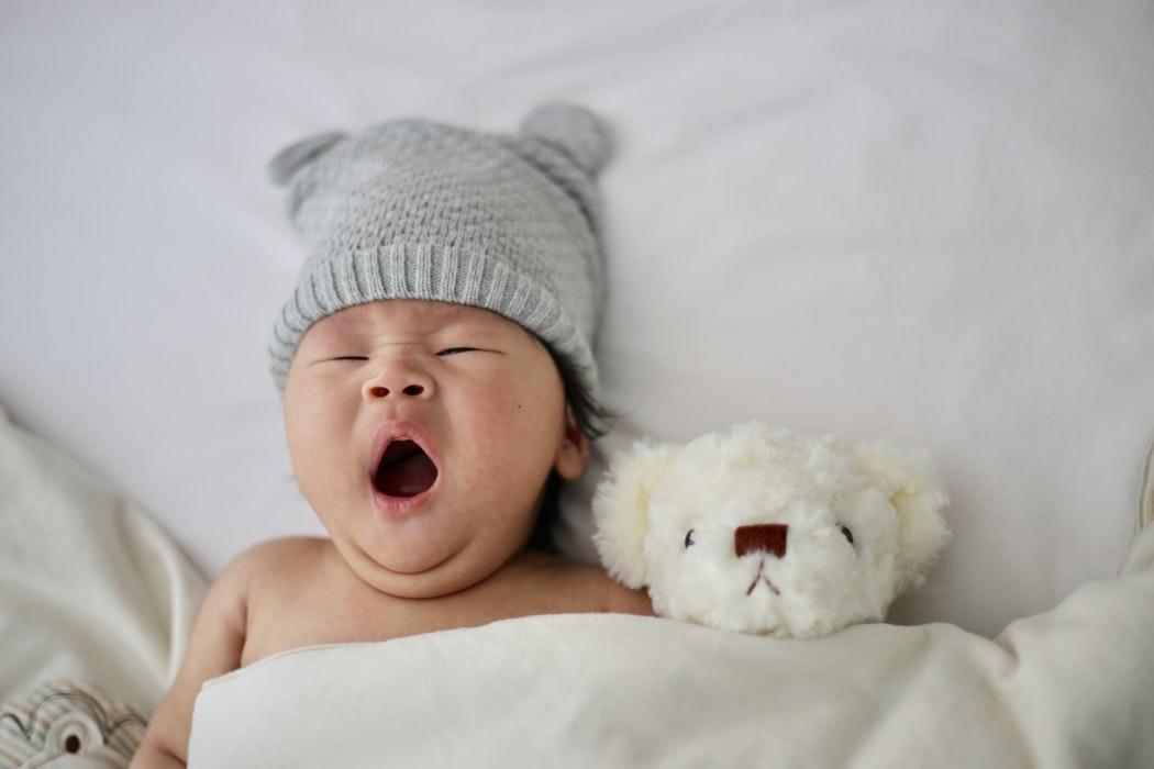 morfologie fetala inainte de nastere